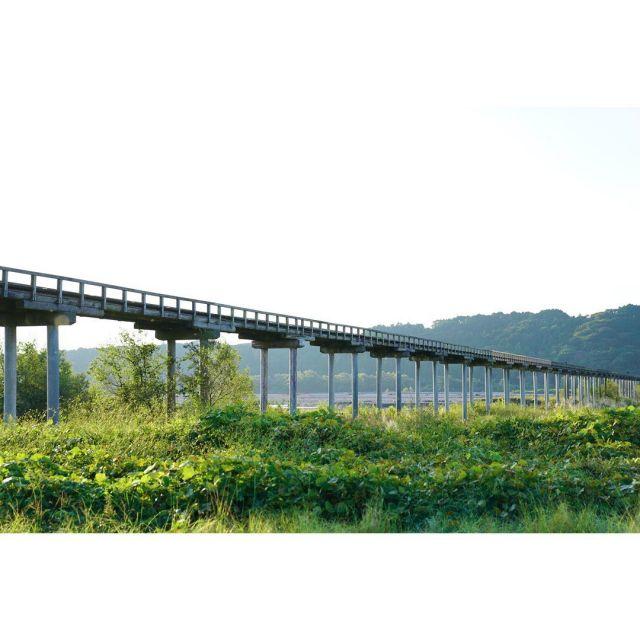 今日は朝早い時間から打ち合わせがあり、現場が始まるまで時間が空いたので蓬莱橋を見てきました。  現場は以前 @snowdesignoffice さんで庭を作らせて頂いた現場のメンテナンスでした。  大井川の増水で何度も修正し、今はRCの脚ですが良いもんだなぁと思います。  #美しい朝日 #朝日 #島田市 #静岡県島田市 #島田出張 #蓬莱橋 #蓬莱橋のど真ん中  #黒奴 #剪定鋏ケース  #剪定 #剪定作業 #スタッフ募集中